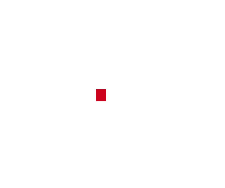 Арсенал — 2