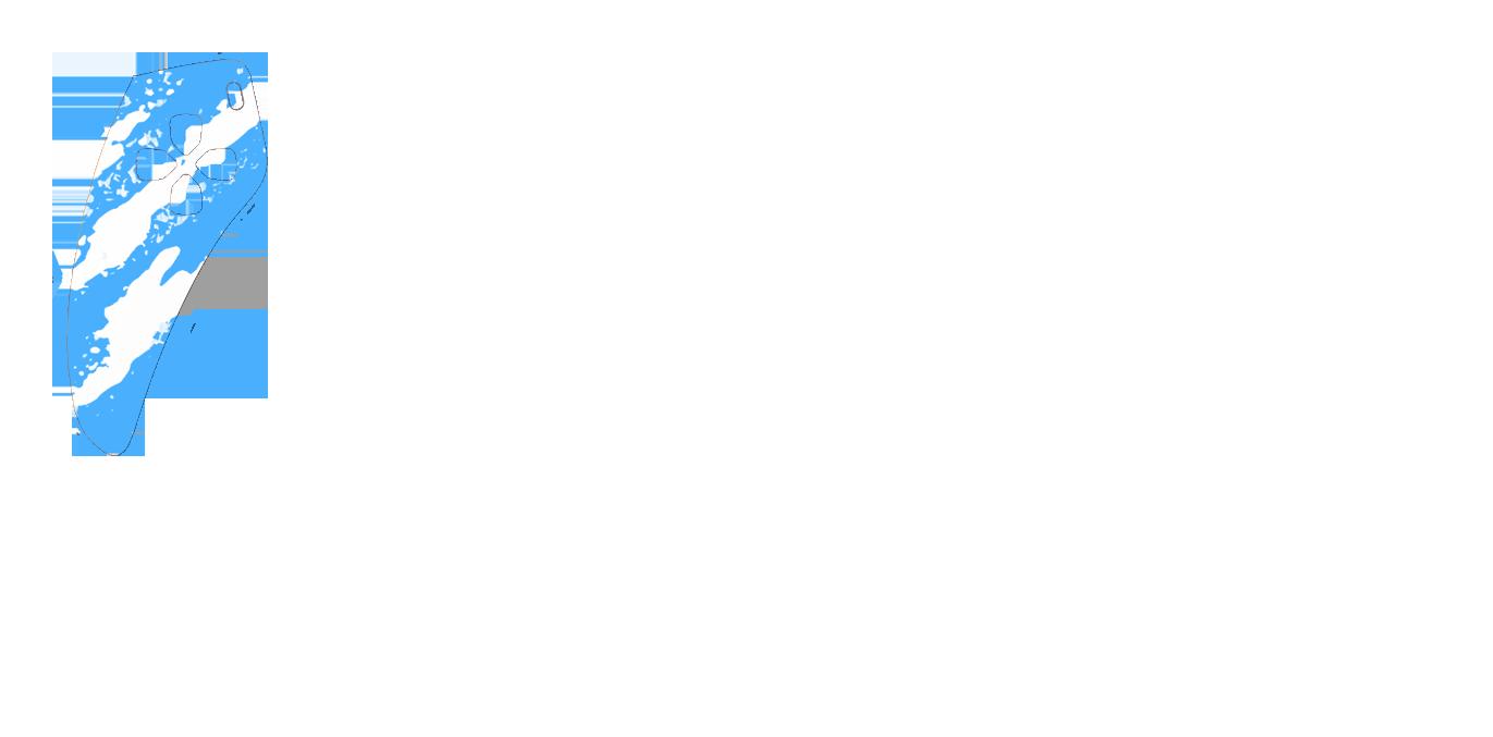 Голубо-белый